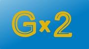 Компания Gx2 - переводы,  репетиторские услуги,  обучение иностранцев
