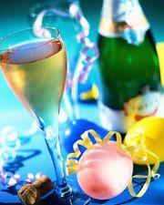 Проведение и организация свадеб и праздников другого рода