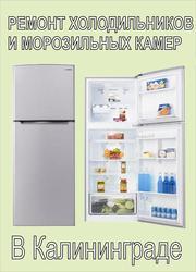 Ремонт холодильников на дому.
