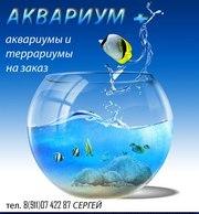 аквариумы и террариумы на заказ
