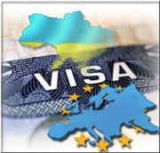 Визовая поддержка (Италия, Германия,  Польша,  Литва)