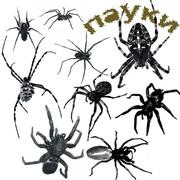 Комаров,  пауков,  клещей уничтожение